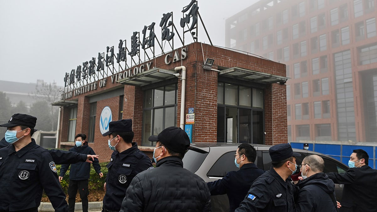 Scientists at Wuhan lab in COVID probe admitted being bitten by bat